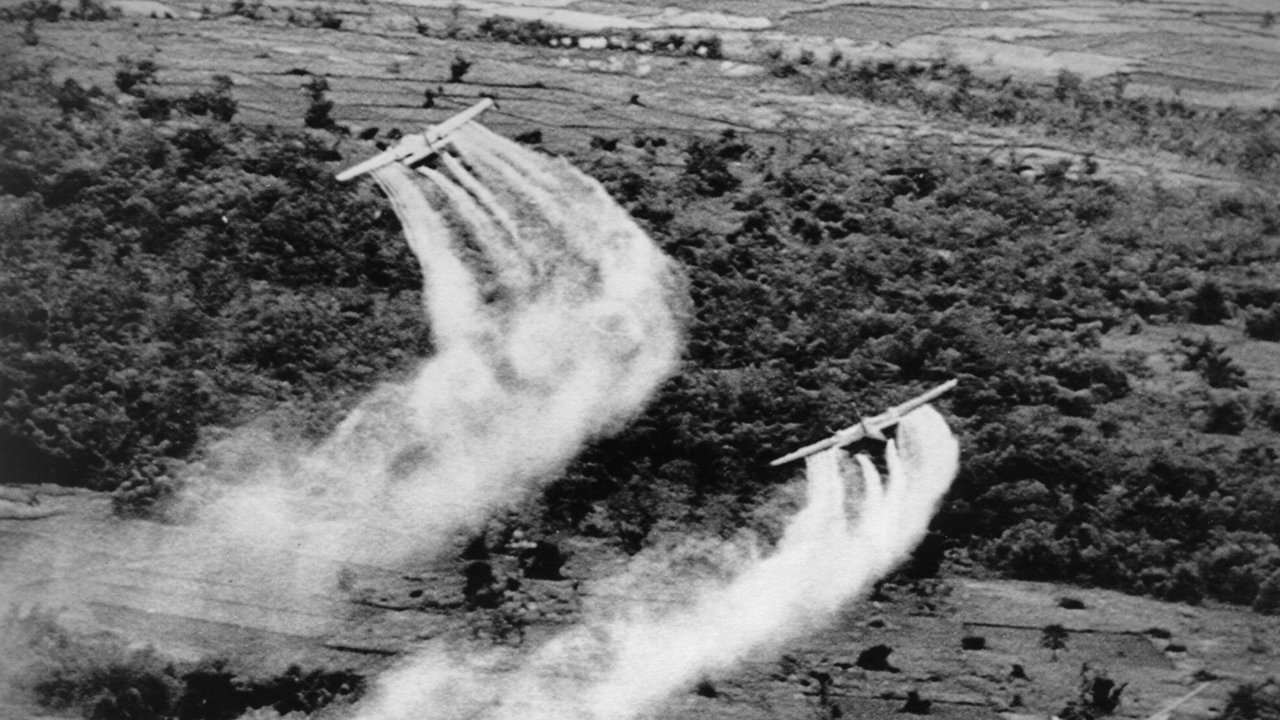 the cause and effect in the use of agent orange in vietnam 1962 by the us military Whistleblowers have unearthed the widespread use of agent orange by the us military in korea  agent orange in korea  decades after its use in vietnam,.